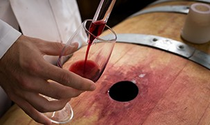 image - A scientist tests wine from a barrel